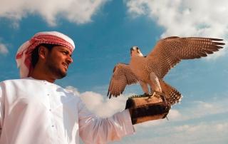 Bild: Gouvernment of Dubai
