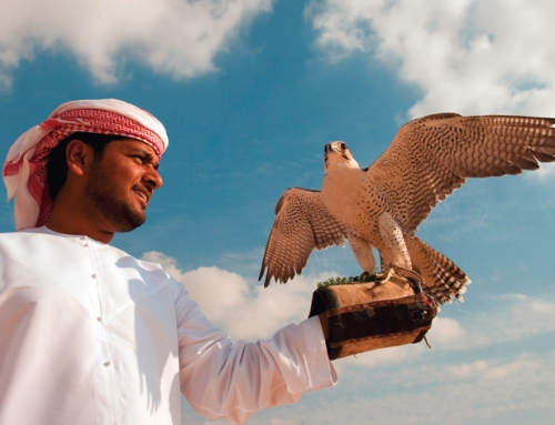 Dubai, Abu Dhabi und Ras Al Kaimah: Günstige Hotels