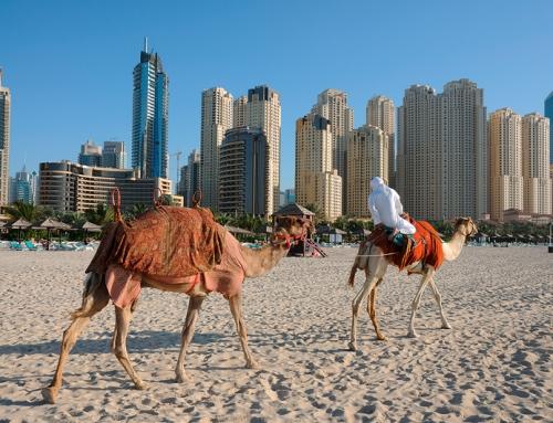 Vereinigte Arabische Emirate: Gute und günstige Hotels