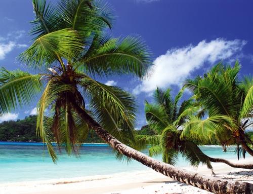 Seychellen: Gute und günstige Hotels auf den Inseln