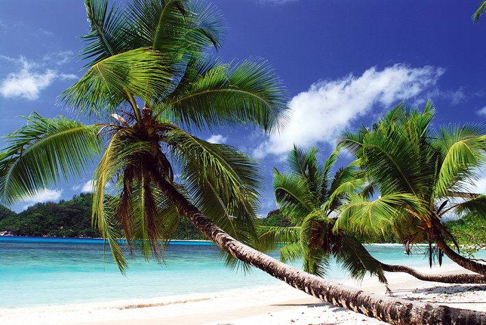 Bild: Seychelles Tourism Board